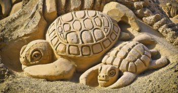 Želvy z písku